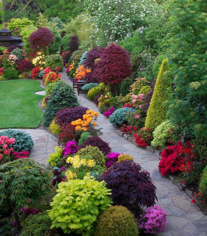 Aujourd'hui, il existe un grand nombre de variétés de plantes panachées qui vous aideront à créer une image vraiment fantastique de votre terrain.