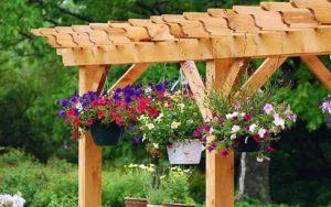 De belles fleurs dans le jardin