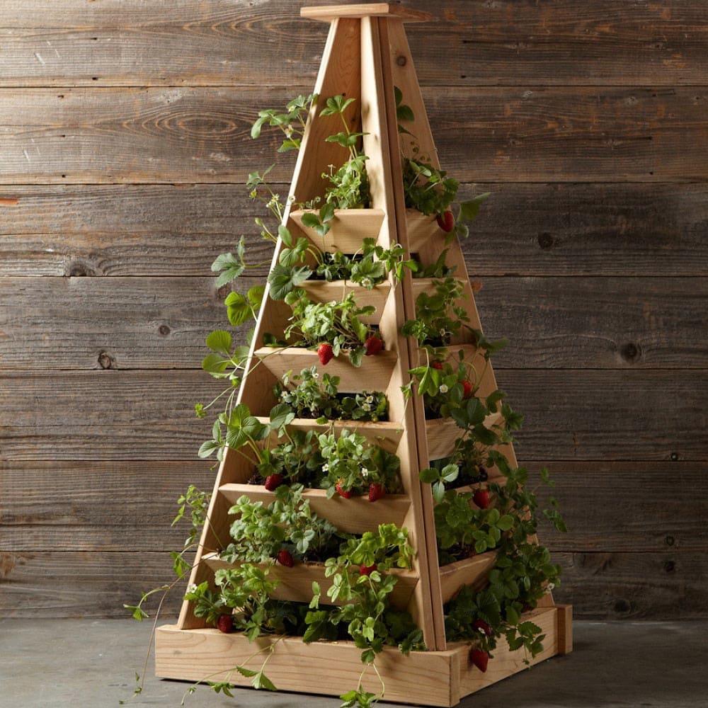 Parterre de fleurs vertical (jardin fleuri) en forme de pyramide