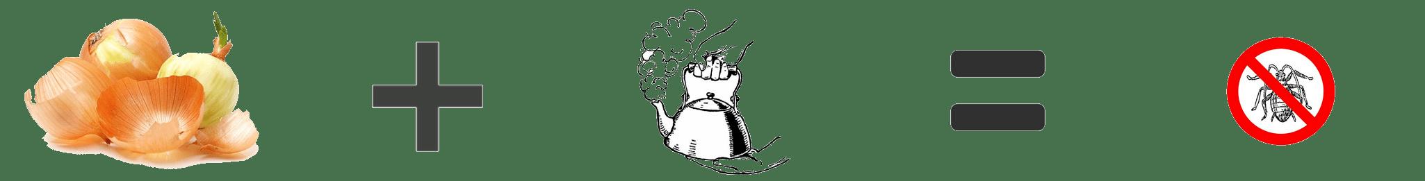 Teinture d'oignon contre les insectes