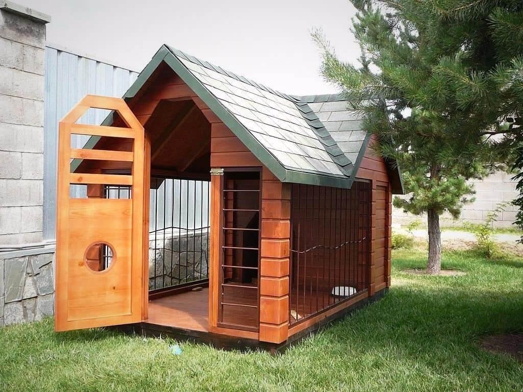 Le design original de l'enclos pour chiens, avec une construction plutôt robuste