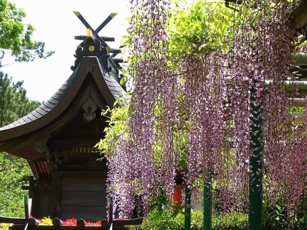 Jardin de style japonais