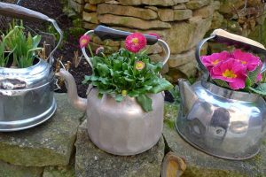 fleurs dans une vieille théière