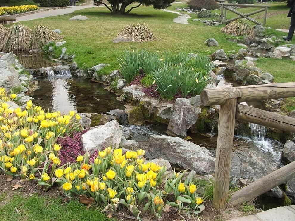 Камнями можно выложить искусственный ручей, возле которого высаживаются красивые цветы, например тюльпаны