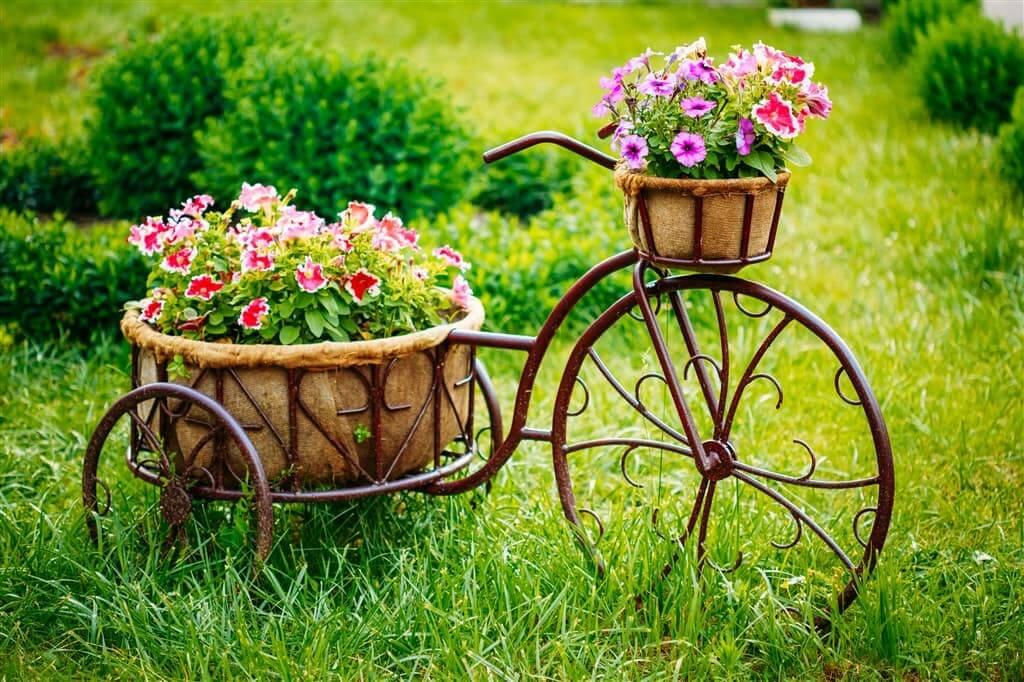 Un parterre de fleurs d'un vieux cadre de vélo