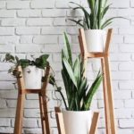 supports de sol pour plantes d'intérieur