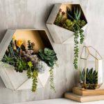composition originale de plantes