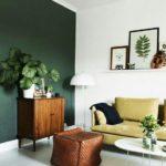 comment décorer un intérieur avec des plantes