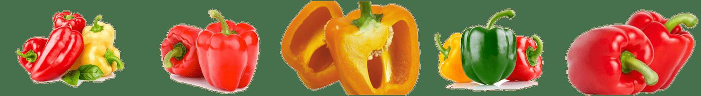 variétés de poivrons