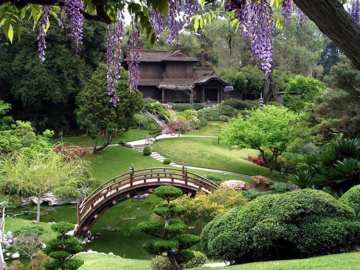 Paysage pittoresque avec un joli pont en bois au-dessus d'un étang