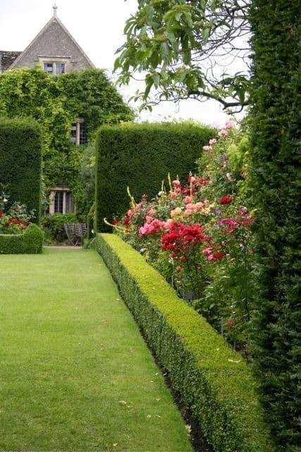 Зеленый забор из самшита придаст индивидуальности вашему частному дому