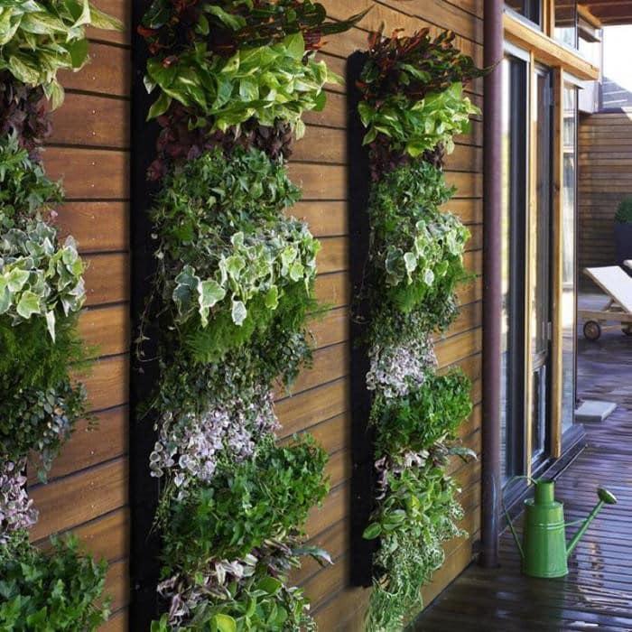 Вертикальные клумбы на фасаде вашего дома подчеркнут его индивидуальность