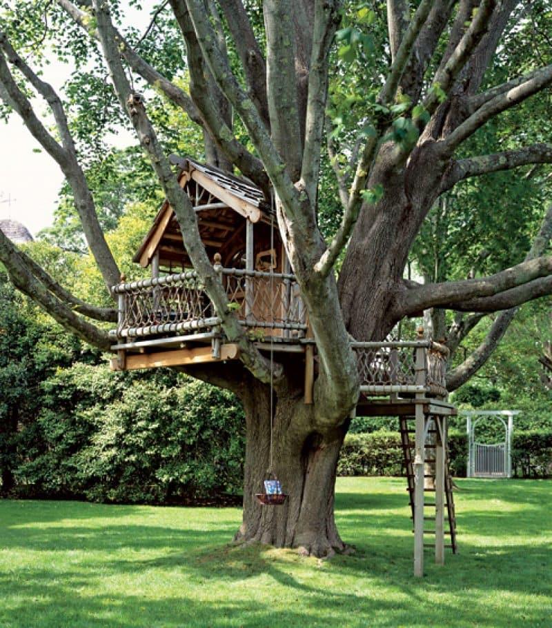 Красивый домик, удачно расположившийся в кроне большого дерева