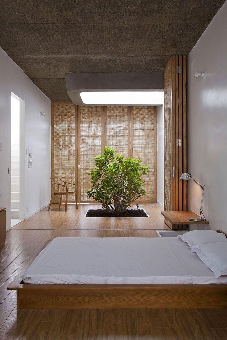 Что может быть лучше чем свое собственное дерево в доме