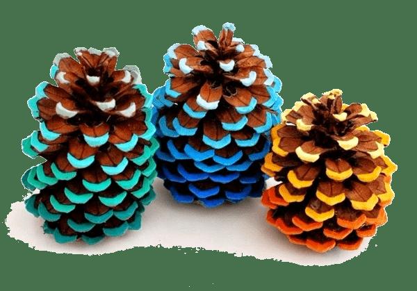 Яркие шишки станут прекрасным украшением для вашей елки