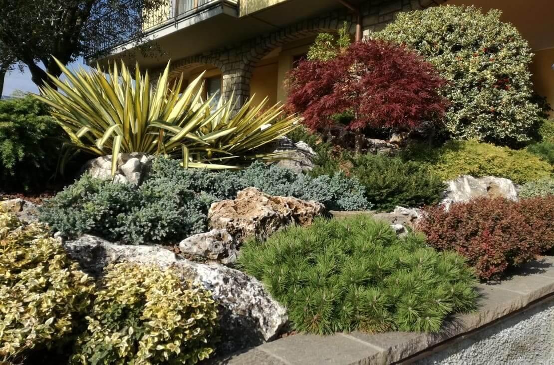 По соседству с камнями хорошо себя ощущают неприхотливые растения, требующие минимальное количество влаги