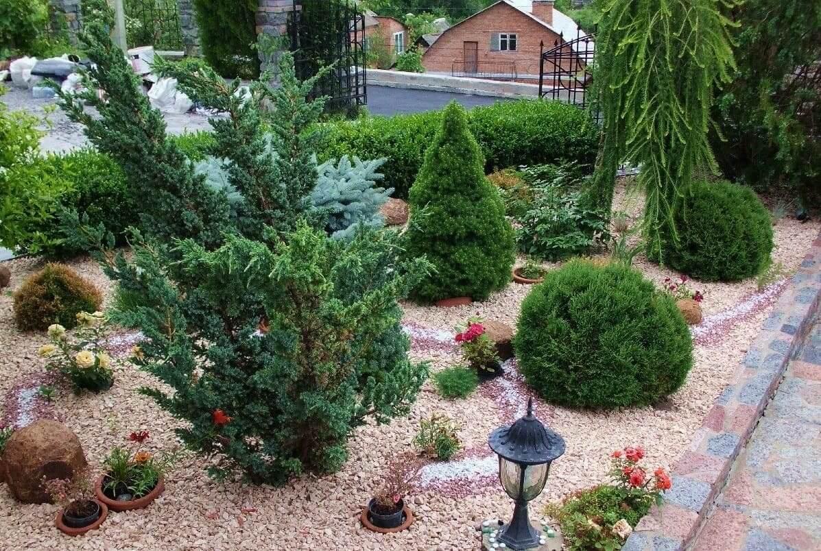 Цветы не только украшают ваш сад, но и наполняют его чудесным ароматом