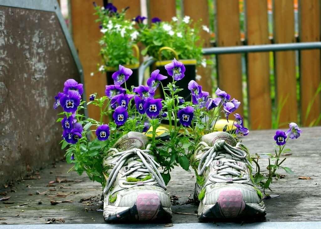 Цветы в старой обуви - отличная идея для тех, кто любит экономить