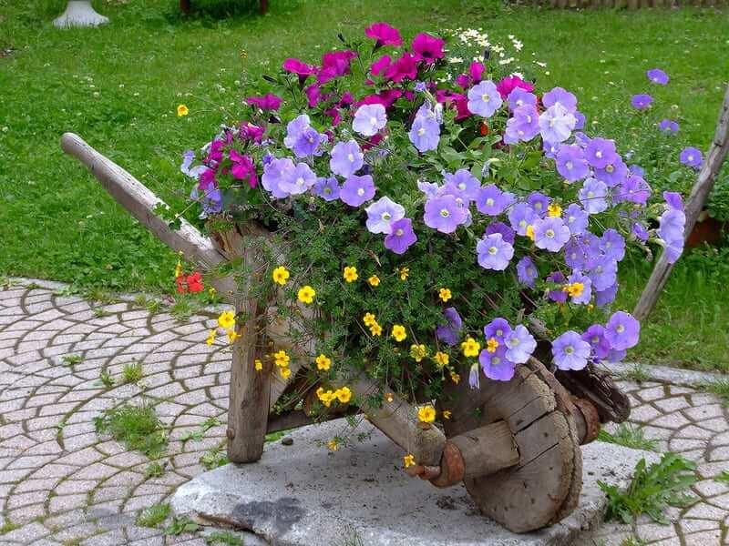 Если ваша старая тачка больше не пригодна для использования по назначению, найдите ей применение в другом месте, например в качестве клумбы для цветов