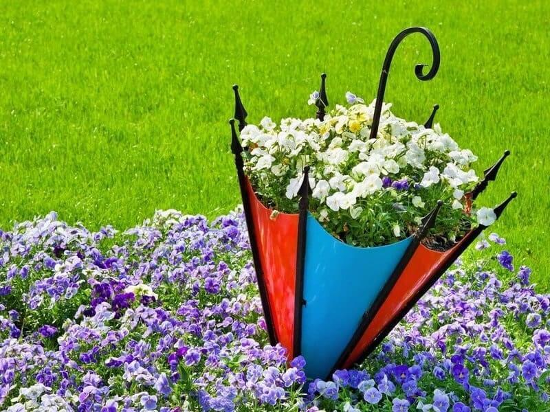 Цветник из старого зонта