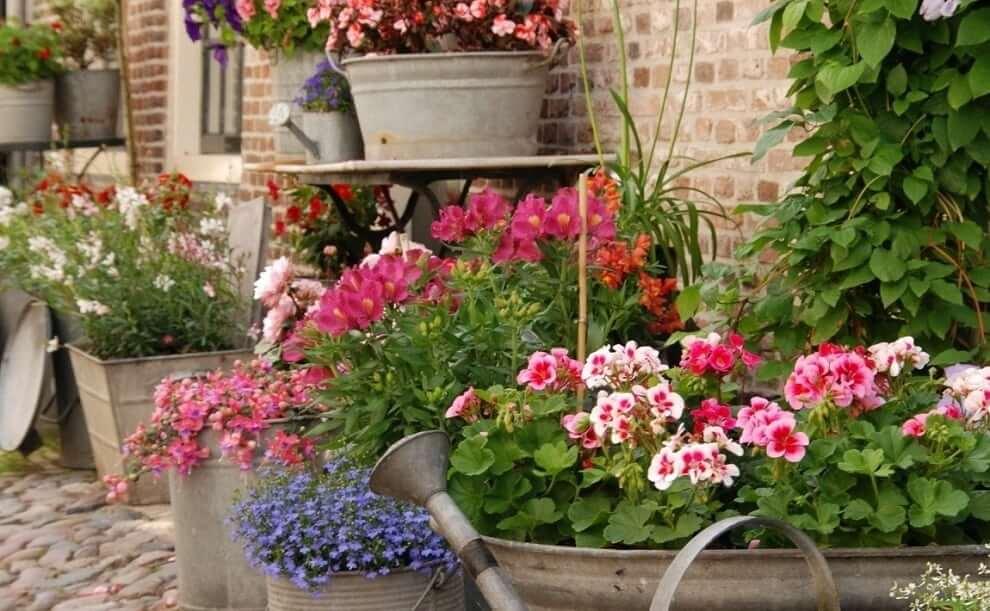 Использовав старую оцинкованную посуду, можно устроить настоящий цветник у себя перед домом