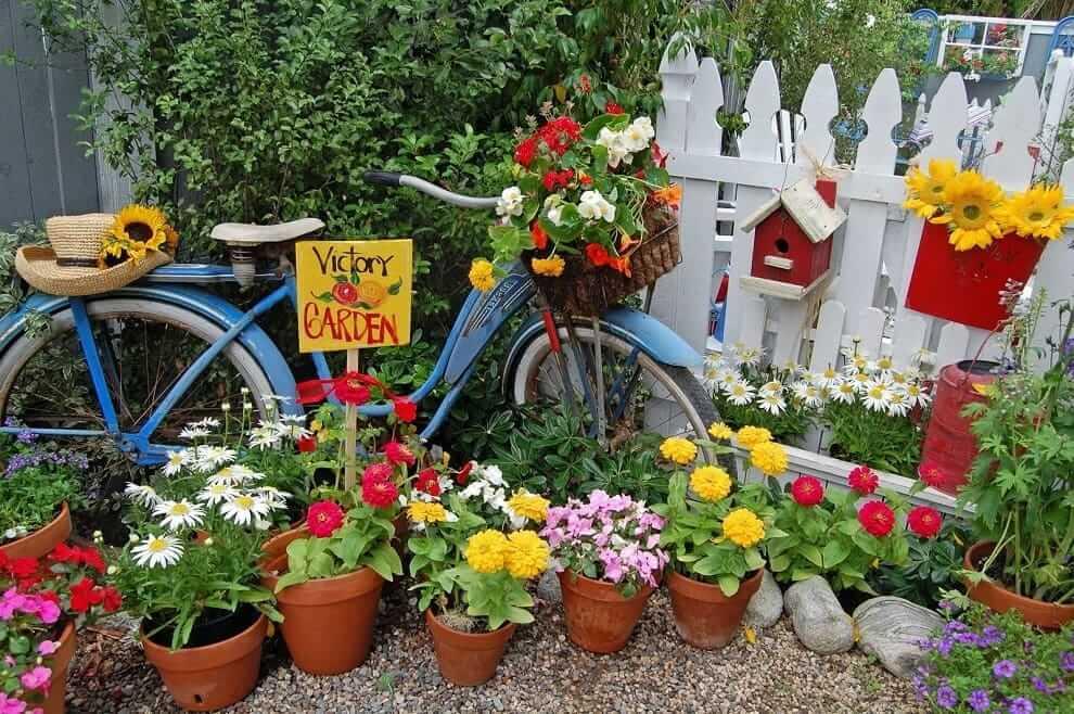 Выставка цветов из однолетних растений