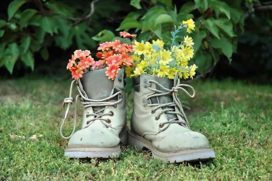 Прекрасное сочетание желтых и красных цветов высаженных в старые кожаные ботинки