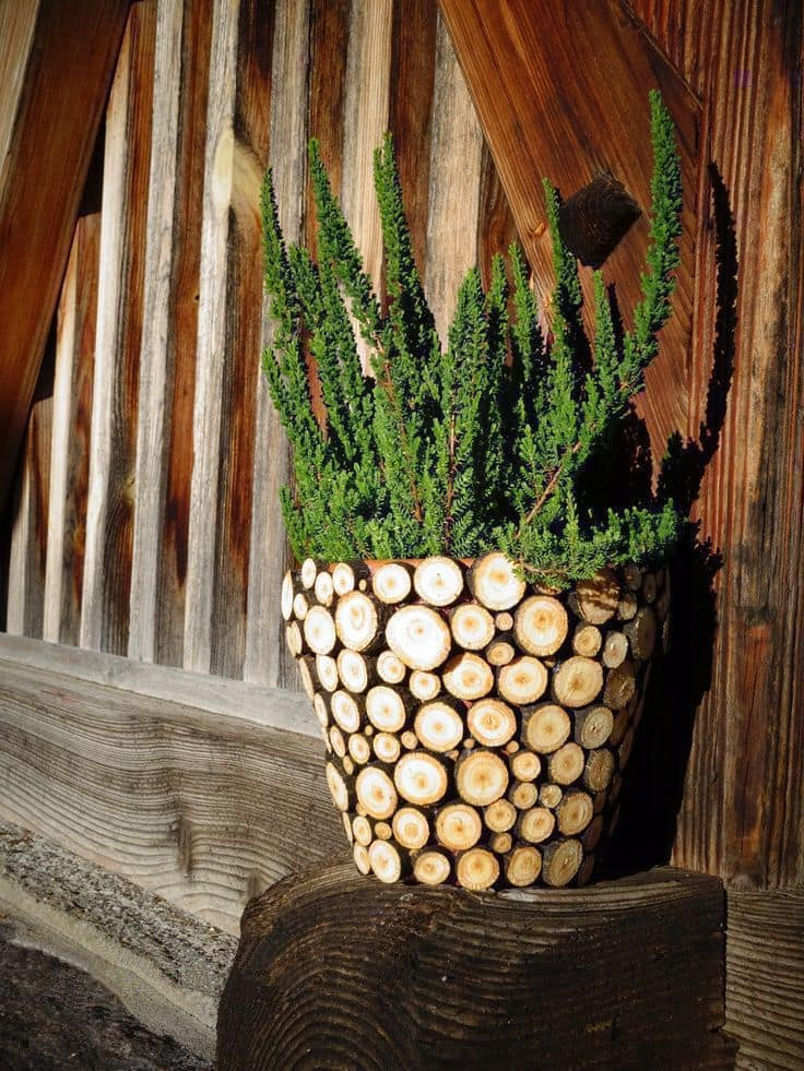 Чтобы сделать такой цветочный горшок понадобятся клей и древесные спилы различных диаметров