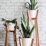напольные подставки для домашних растений