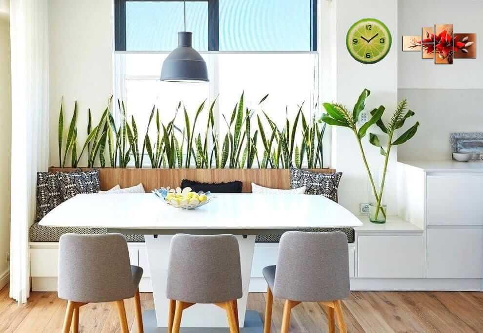 Интересным вариантом декора кухни может послужить живая стена из растений