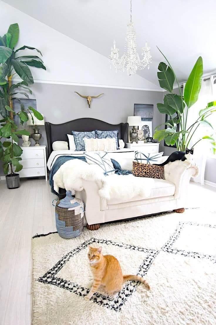 Подбирая флору для спальни старайтесь сделать выбор в пользу высоких и неприхотливых комнатных растений