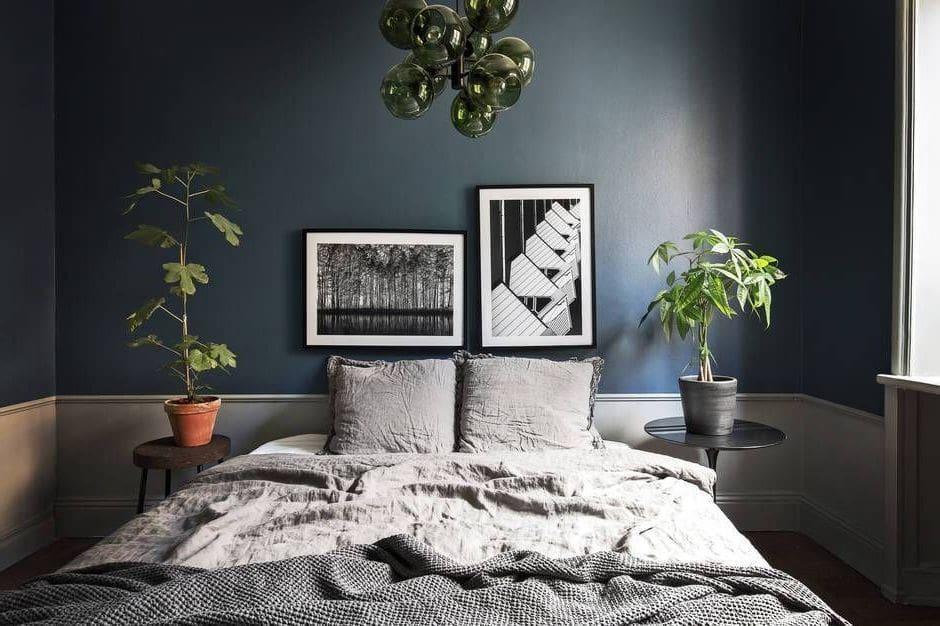 Красивые комнатные растения в горшках