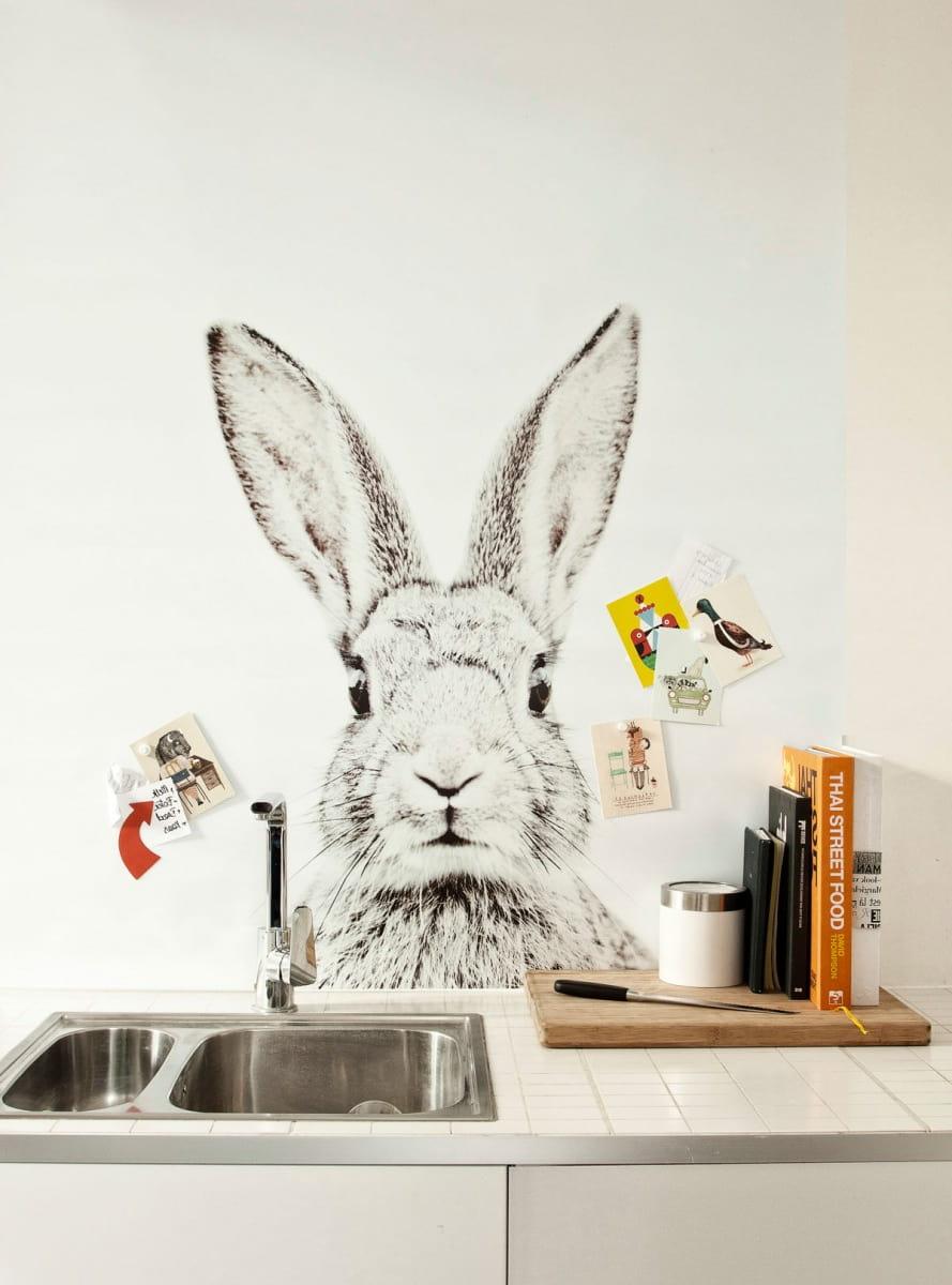 Оригинальное оформление рабочей зоны фотообоями с изображением забавного кролика