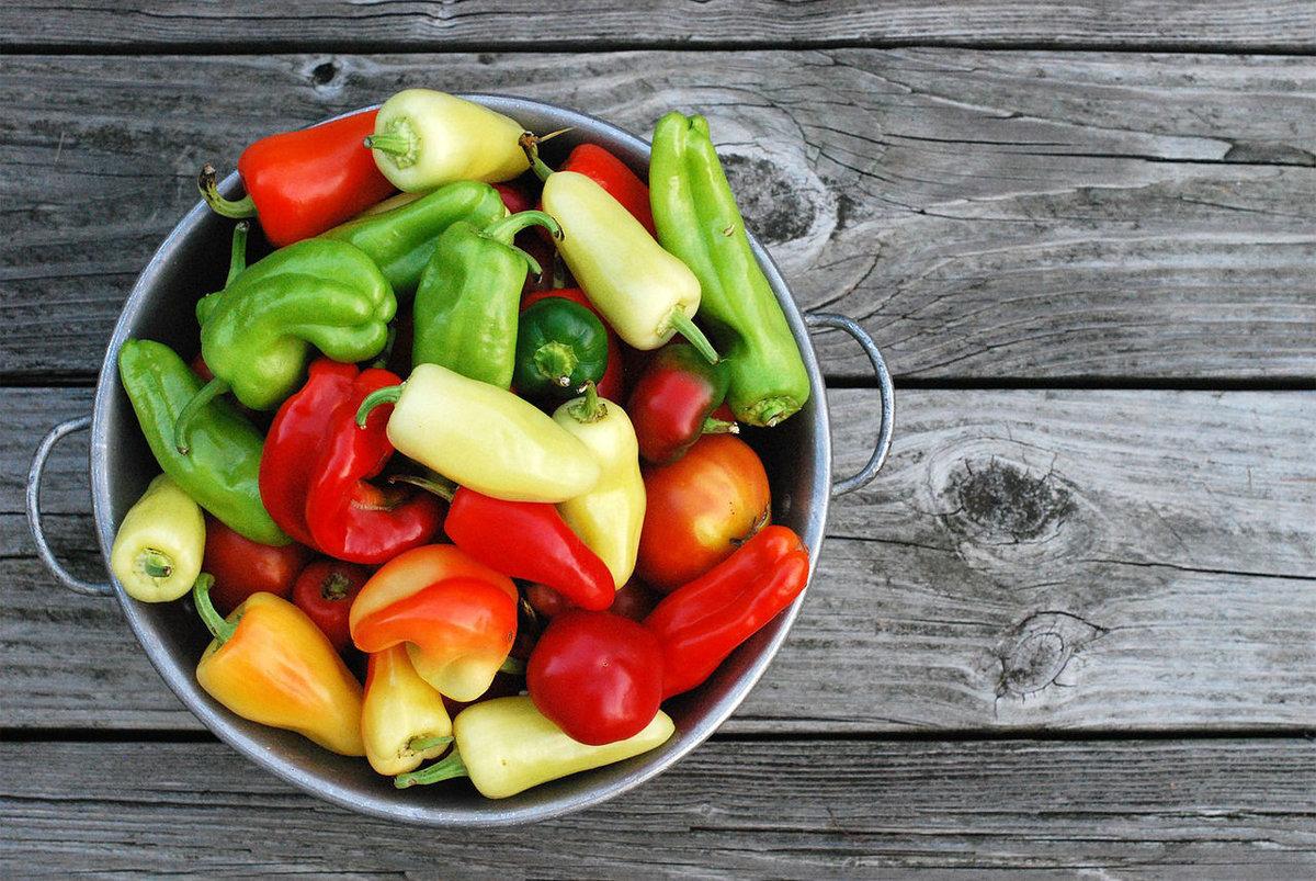 Даже начинающему садоводу-любителю можно получить хороший урожай перца, если выполнить все рекомендации по его выращиванию