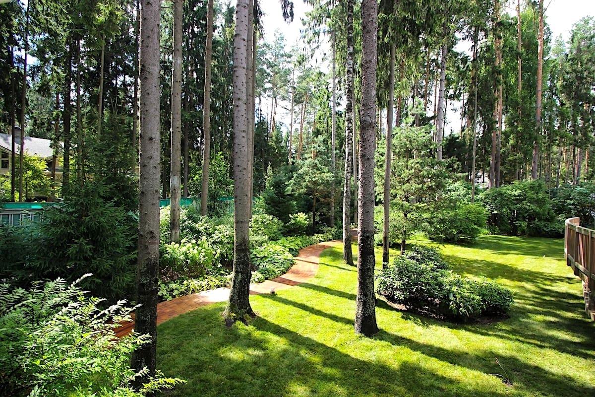 Сад в лесном стиле должен полностью сливаться с природой, не нарушая при этом ее гармонию