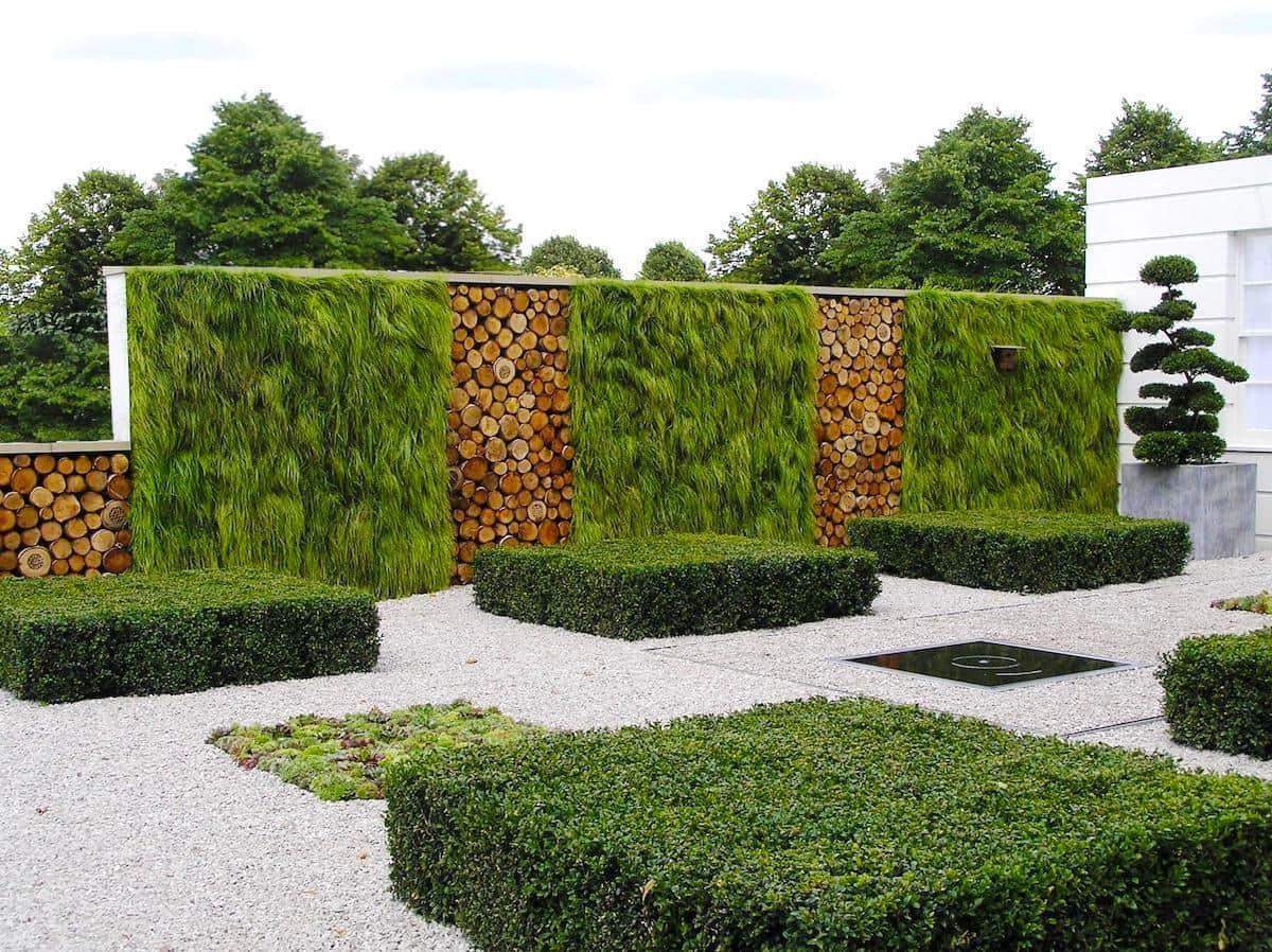 Интересный вариант вертикального озеленения забора