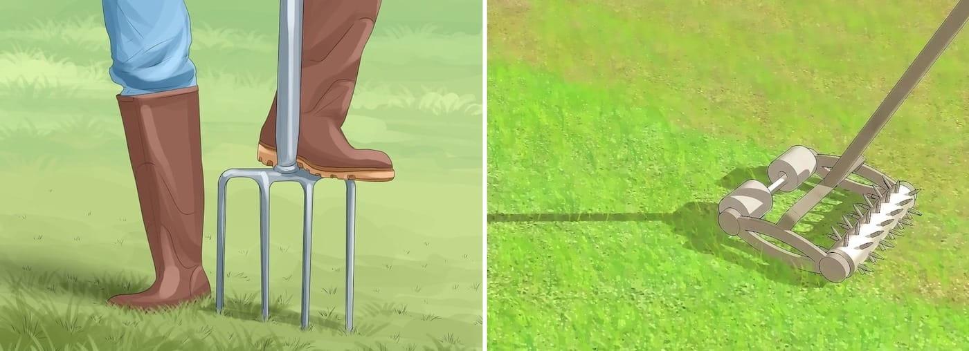 Аэрация газонной травы с помощью вил и специального катка с ролликами и шипами