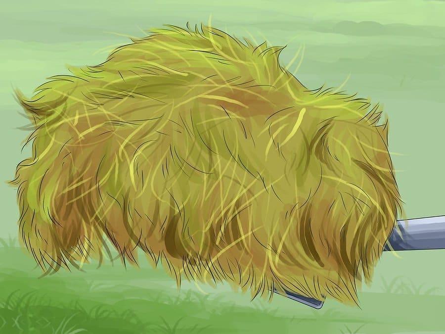 Свежескошенную газонную траву можно использовать как мульчу для овощных культур и других растений