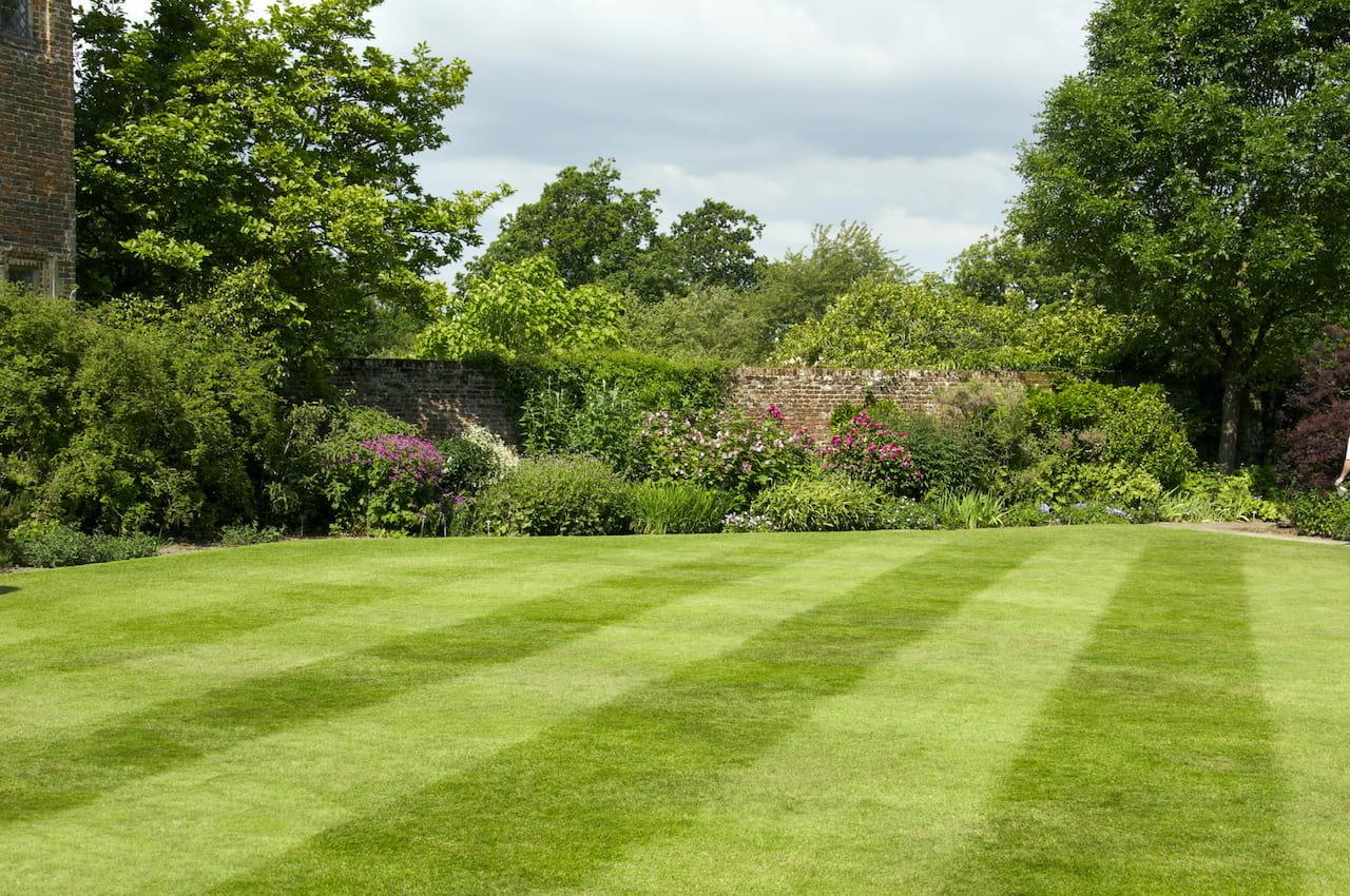 Красивый сад с ухоженным газоном