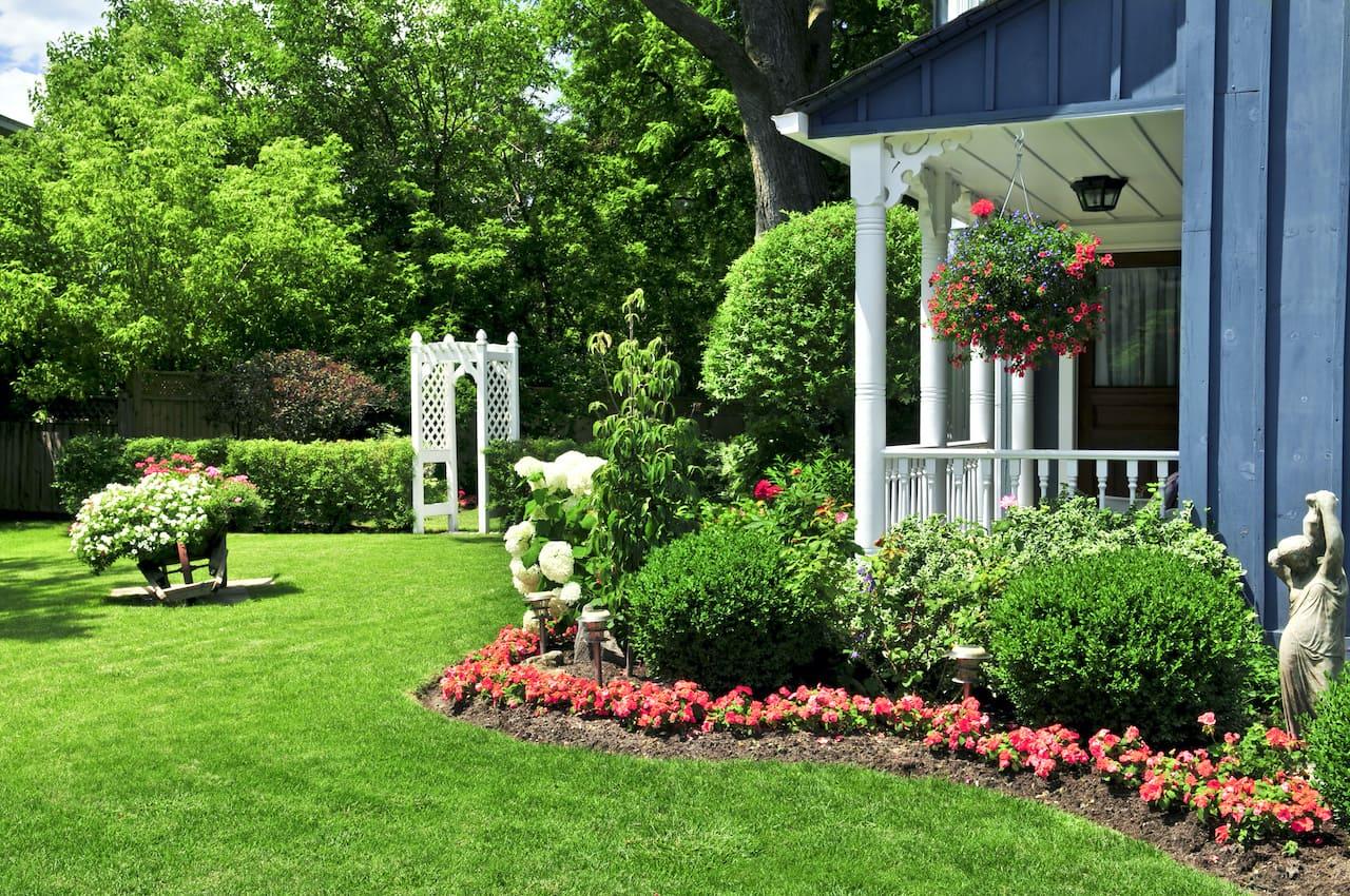 Вряд ли что-то может лучше украсить придомовую территорию, чем лужайка с аккуратным и красивым газоном