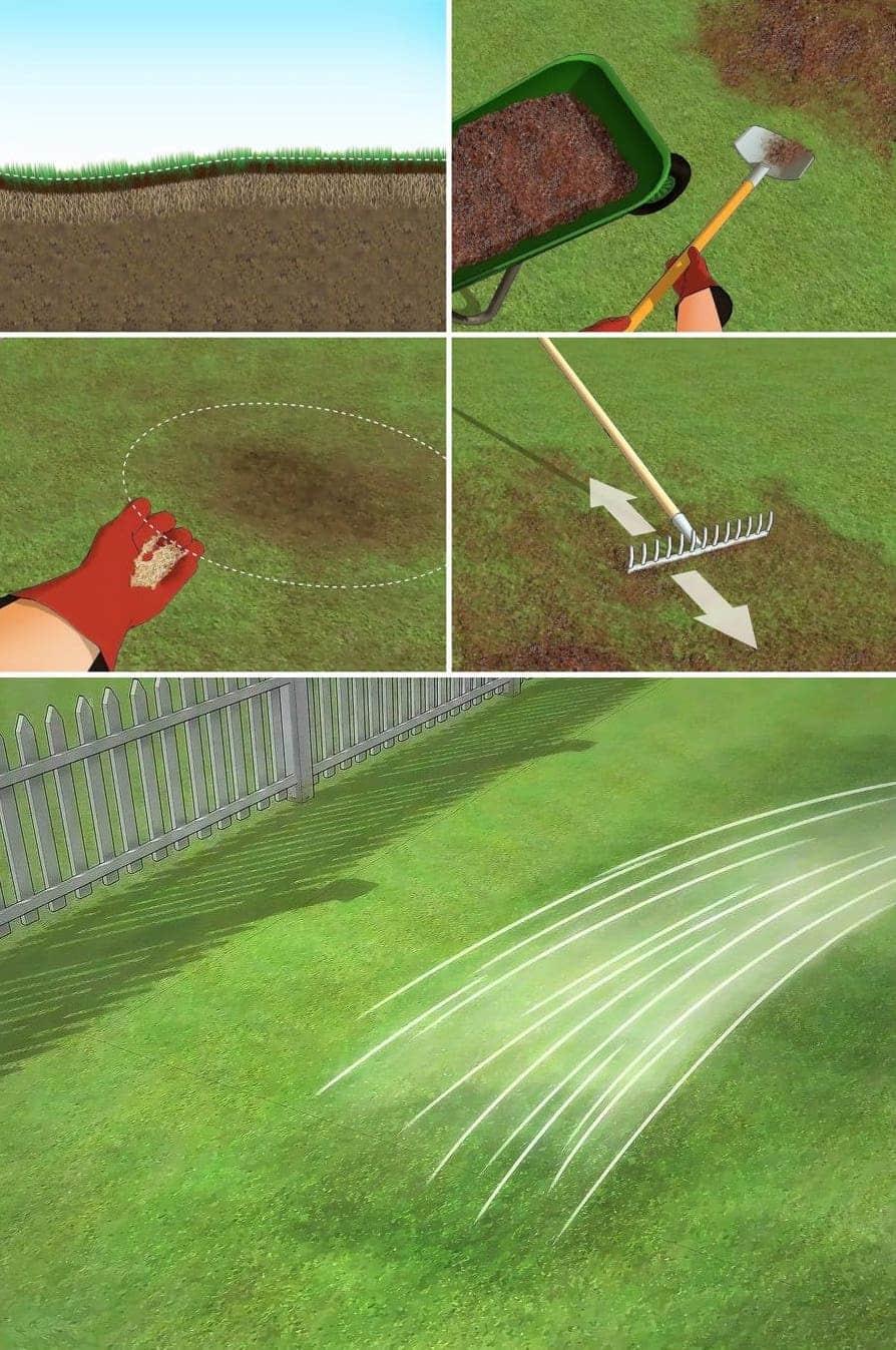 Выравнивание рельефа участка засеянного газоном