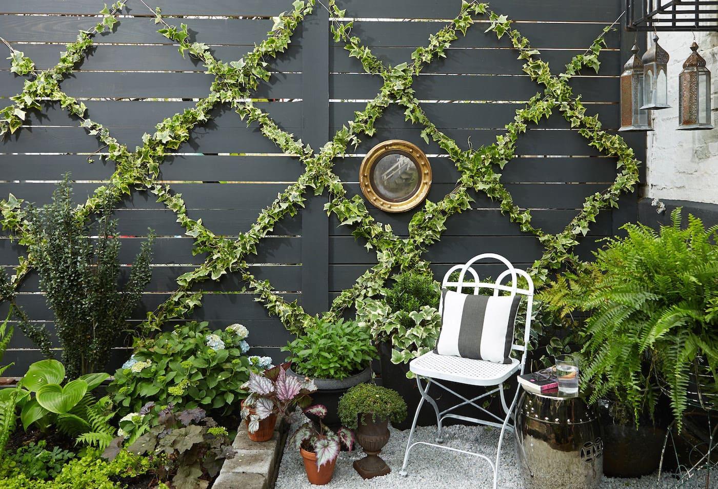 дизайн двора частного дома фото 32
